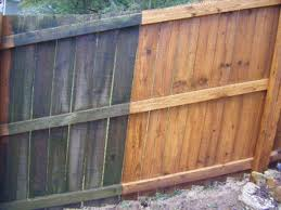 Fence-Cleaning